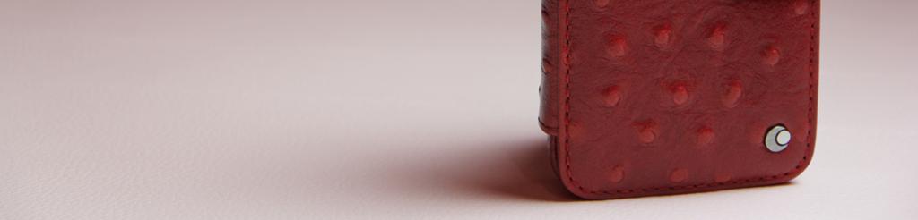 Und welche Lederschutzhülle darf es für Ihr iPhone sein?